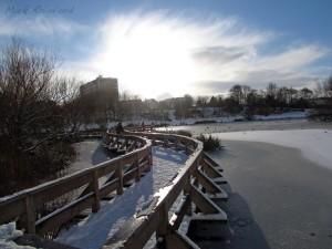 Figgate Park - Frozen Pond