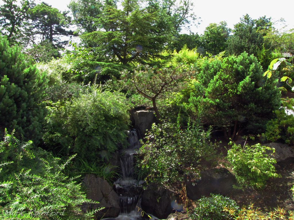 Edinburgh-Kyoto Friendship Garden
