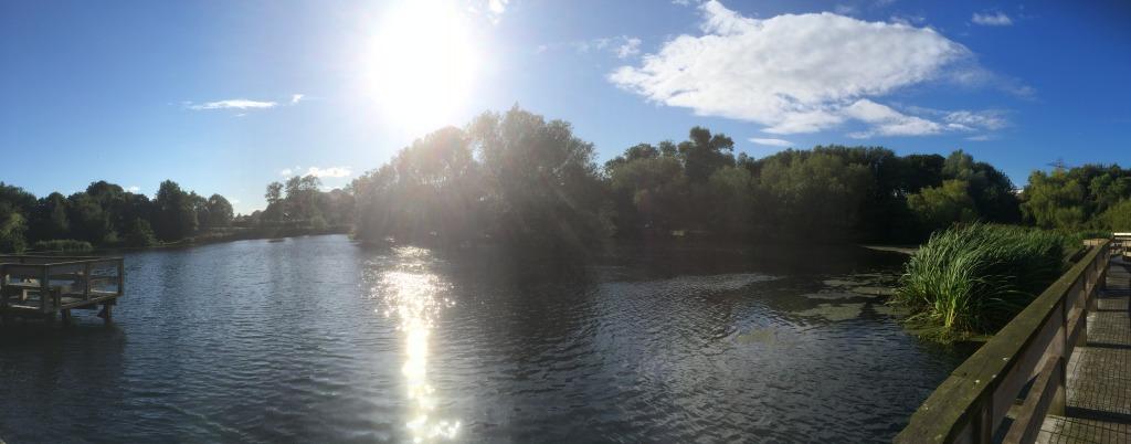 Figgate Park