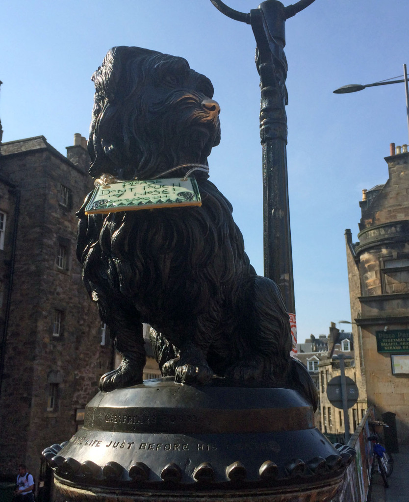 Greyfriars Bobby's wee nose