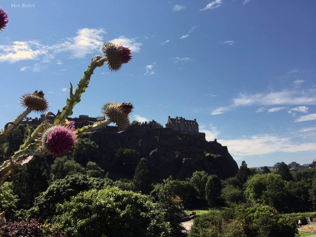 Edinburgh Castle With Thistle